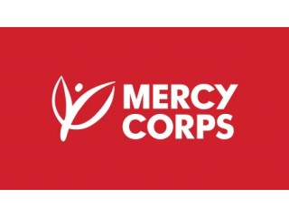 Program Assistant - Youth Livelihood at Mercy Corps Nigeria