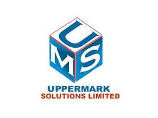 Digital Marketing Executive - UpperMark Solutions